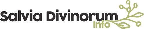 Objective Data and Expert Advice: Salvia divinorum