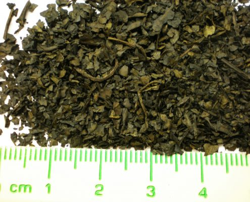 USE: Salvia Extract